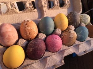 Dye Easter Eggs Up Close