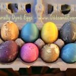 Naturally Dyed Eggs - www.OddsandEvans.com
