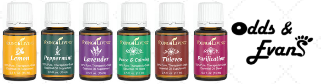 6 top back to school essential oils