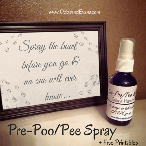 Homemade Pre Poo Pee Spray Bathroom No Stink (homemade poo pourri)